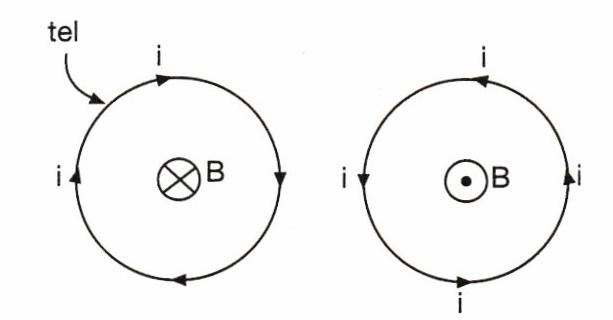 çembersel telin merkezi